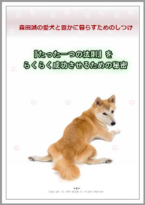 『森田誠の愛犬しつけ法』限定特典を追加!「森田誠の犬しつけをラクラク成功させるための秘密」