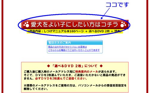 info3