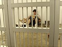 「プリズン・ドッグ〜僕に生きる力をくれた犬〜」を見て(NHK BSプレミアム)