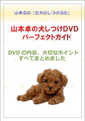 山本卓の「愛犬のしつけ講座」に限定特典を追加しました!