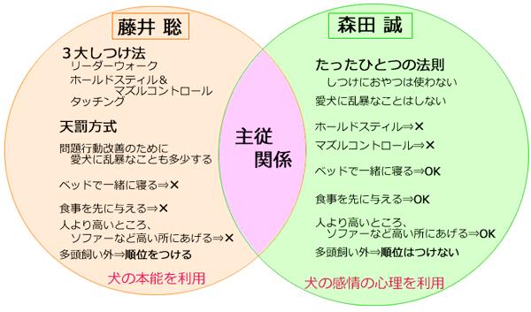 森田藤井聡_違い図