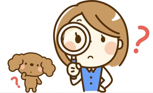 愛犬のプロファイリング