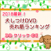 【2018】ぱるかいぬブログ売れ筋の犬のしつけDVDランキング!